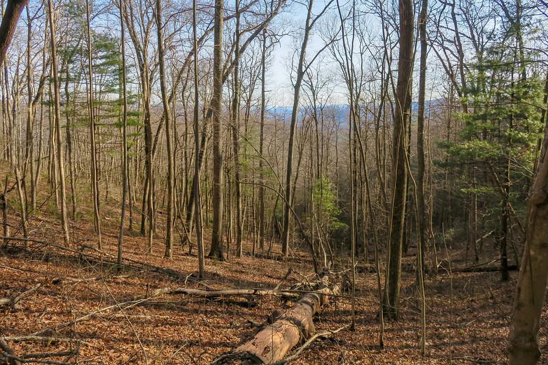 Appalachian Trail -- 3,350'