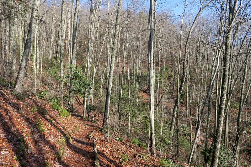 Appalachian Trail -- 2,740'