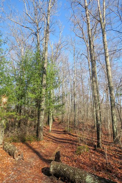 Appalachian Trail -- 2,860'