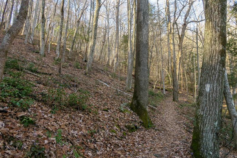 Appalachian Trail -- 3,300'