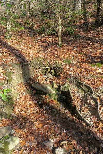 Appalachian Trail -- 3,000'
