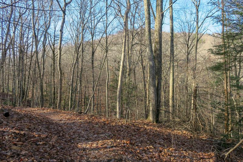 Appalachian Trail -- 3,220'