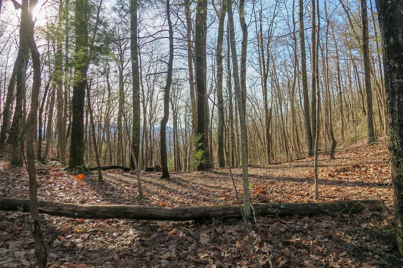 Appalachian Trail -- 3,180'