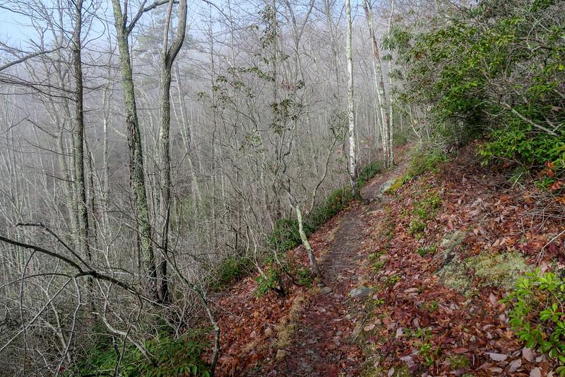 Appalachian Trail -- 2,620'