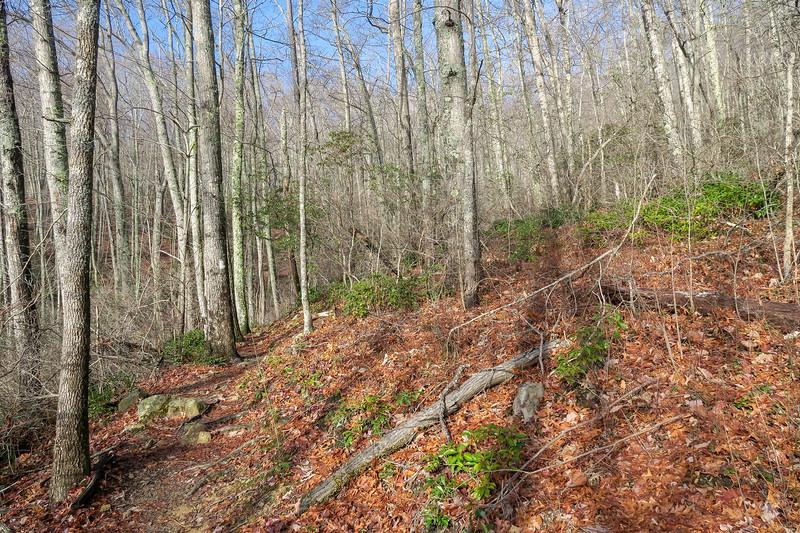 Appalachian Trail -- 2,680'