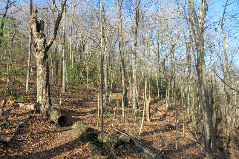 Appalachian Trail -- 3,200'