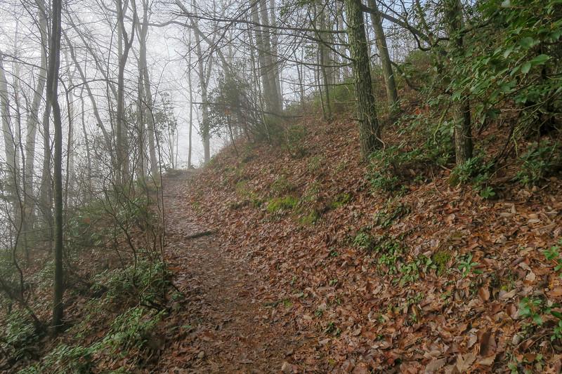 Appalachian Trail -- 2,580'