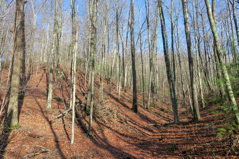 Appalachian Trail -- 2,780'