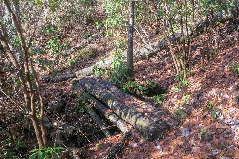 Appalachian Trail -- 2,720'