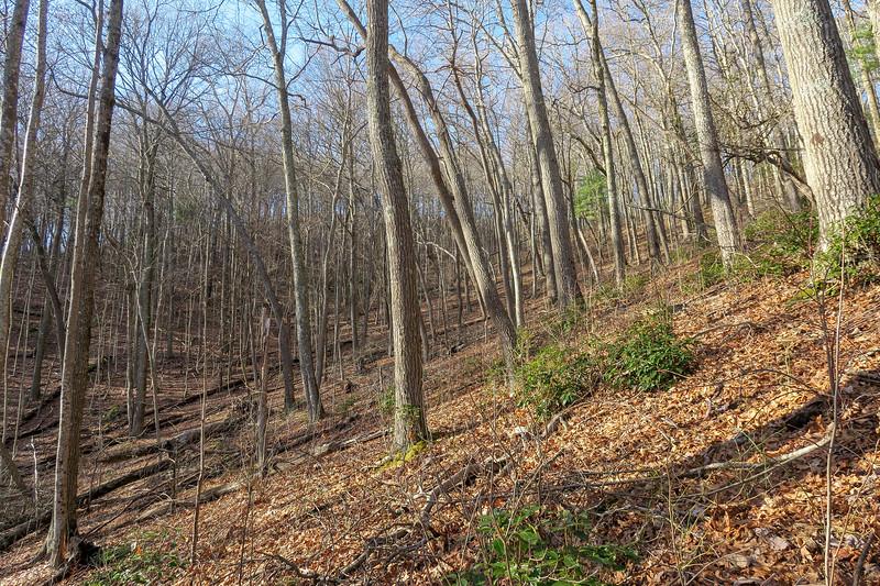 Appalachian Trail -- 3,420'