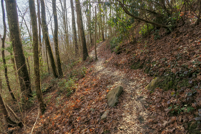 Appalachian Trail -- 3,050'