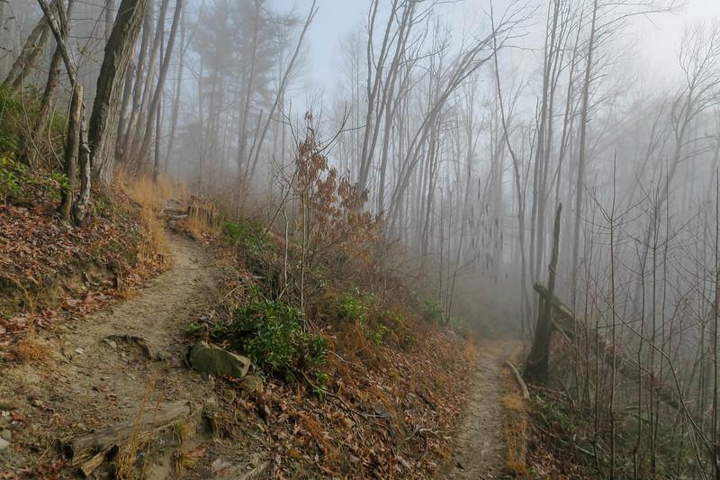 Appalachian Trail -- 2,520'