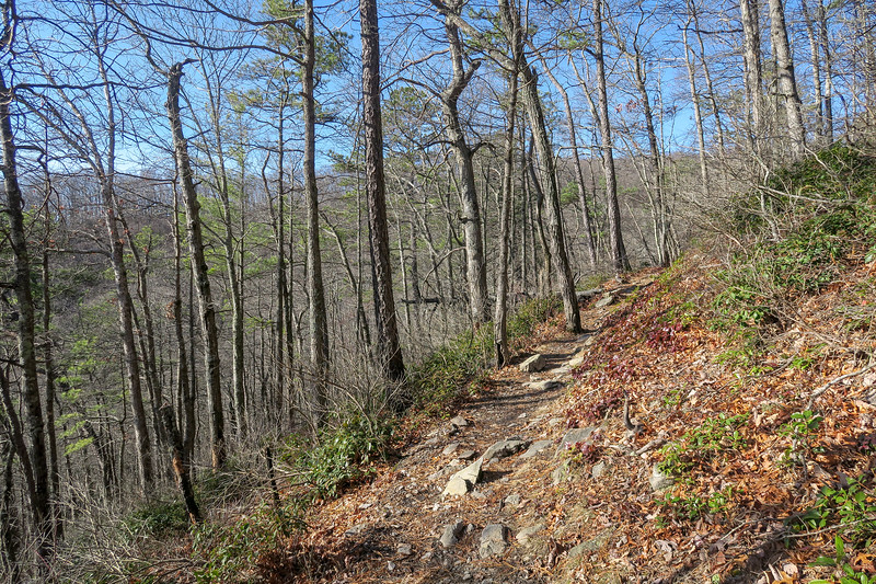 Appalachian Trail -- 3,100'