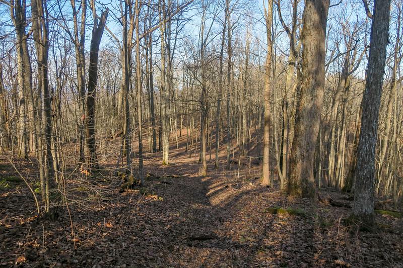 Rich Mountain Spur Trail -- 3,620'