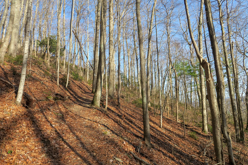 Appalachian Trail -- 3,380'
