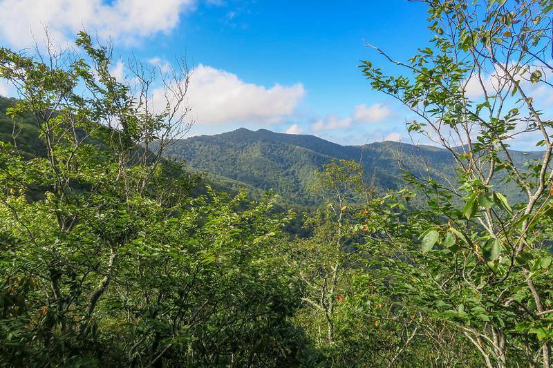 Snowball Trail -- 4,850'