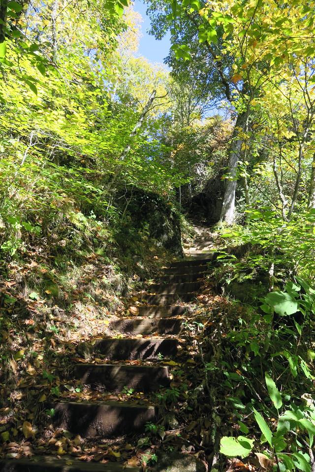 Big Butt Trail -- 5,440'