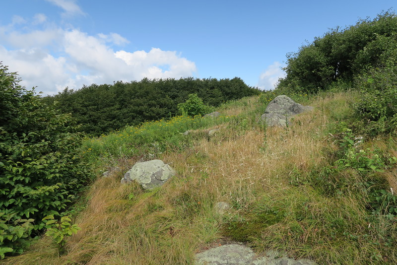 Appalachian Trail - 5,320'