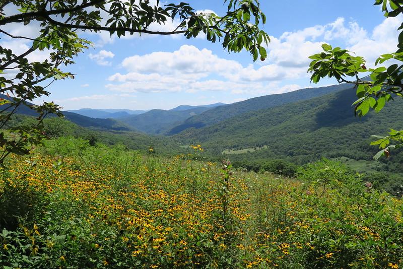 Appalachian Trail - 4,850'