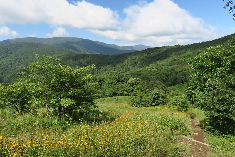 Appalachian Trail - 4,800'