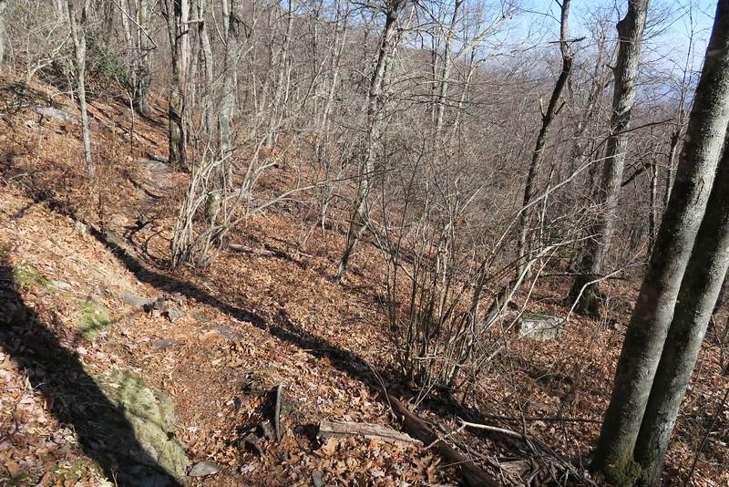 Graybeard Trail -- 5,000'
