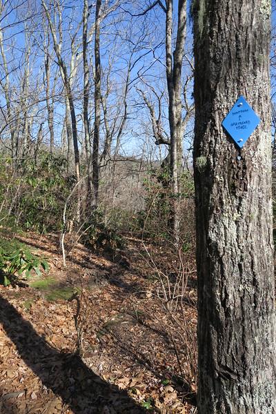 Graybeard Trail -- 4,700'