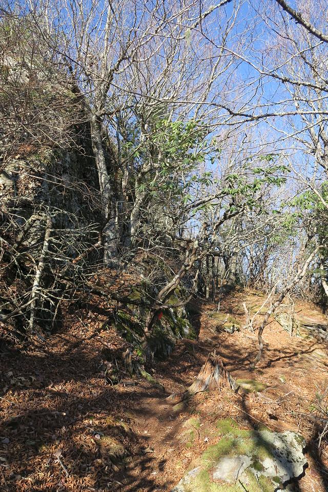 Blue Ridge Pinnacle Trail -- 5,420'