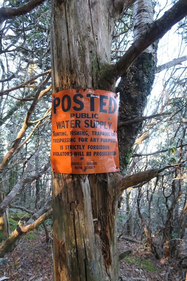 Blue Ridge Pinnacle Trail -- 5,440'