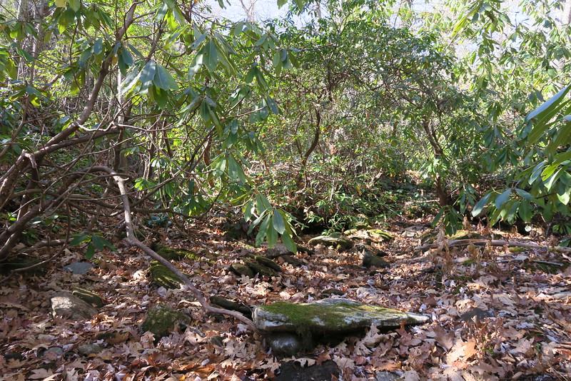 Flat Creek -- 4,480'