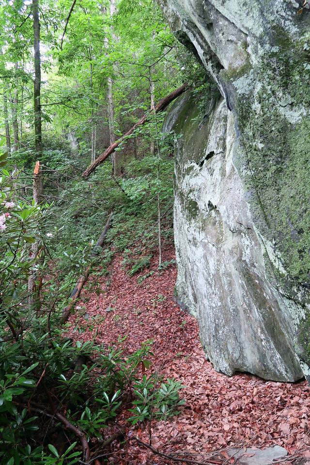 Greentown Shortcut Trail