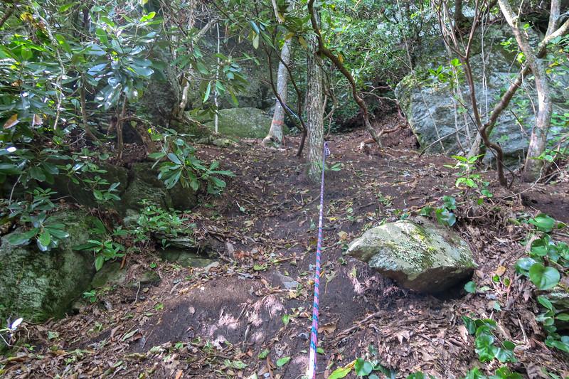 English Falls Path