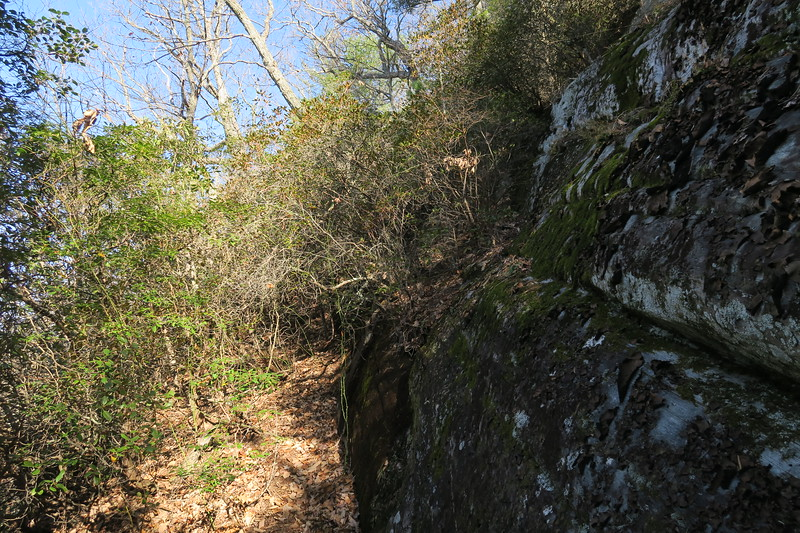 Ledge Trail