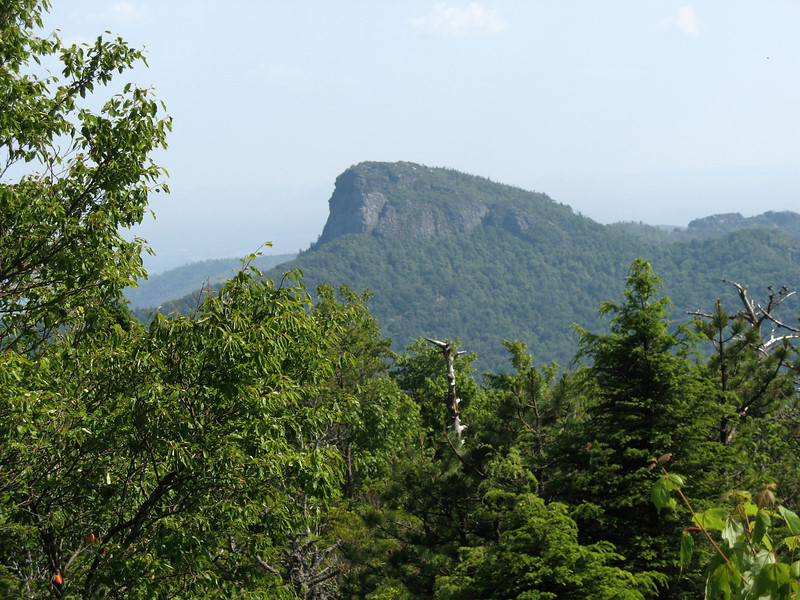 Table Rock through the trees...