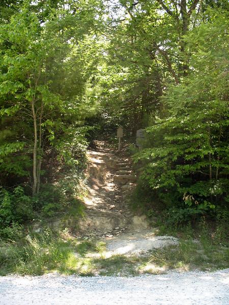 Hawksbill Trailhead