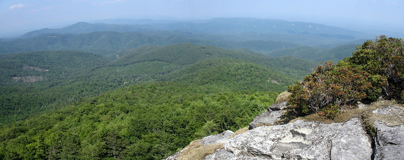 The beautiful greens of Pisgah National Forest to the northeast...