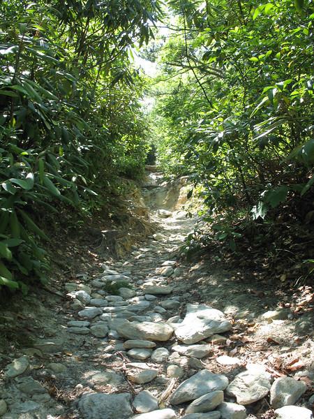 Hawksbill Trail