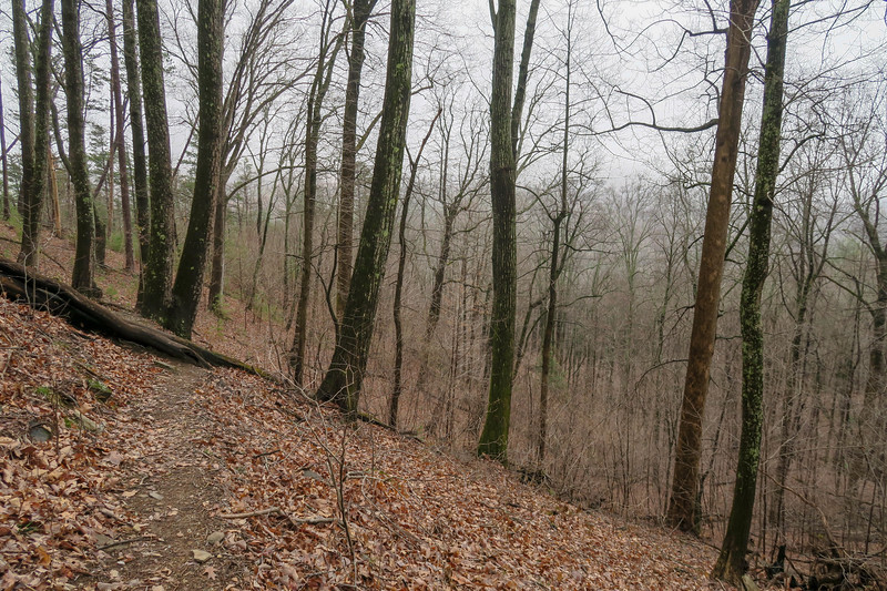 Leadmine Trail -- 1,660'