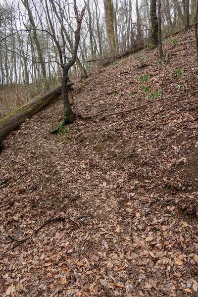 Leadmine Trail -- 1,680'