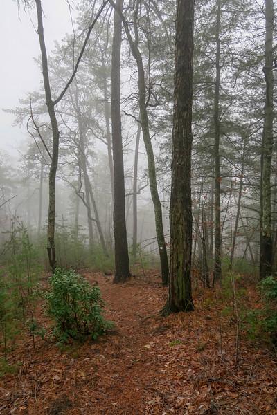 Mountains-to-Sea Trail -- 1,850'