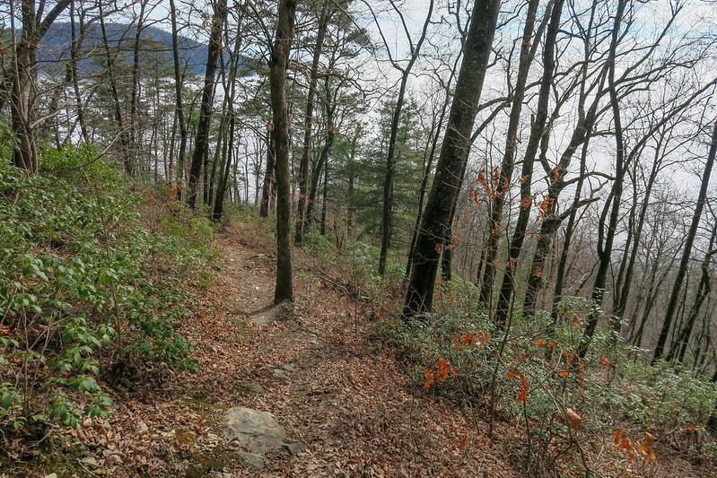Mountains-to-Sea Trail -- 2,450'