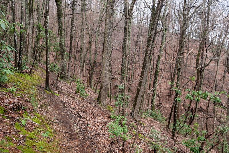 Leadmine Trail -- 1,700'