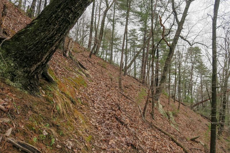 Leadmine Trail -- 1,640'