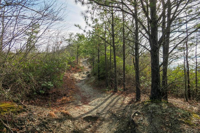 Mountains-to-Sea Trail -- 2,780'