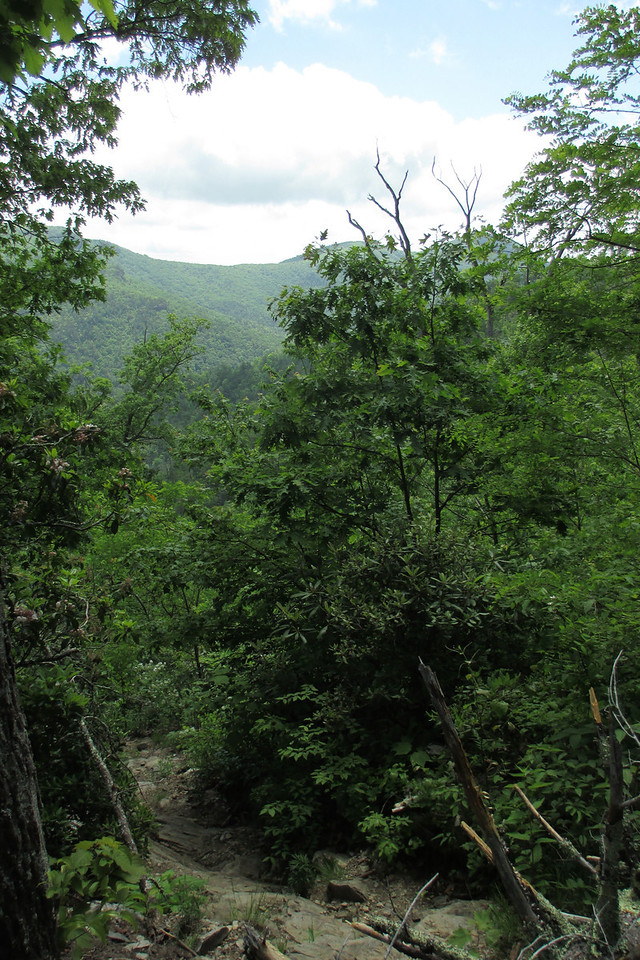 Despite the thickly forested slopes the steepness of the trail allowed for some nice views across the gorge...