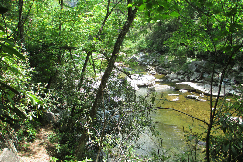 For a little ways above the falls the Linville Gorge Trail almost <i>hung</i> above the river in places...