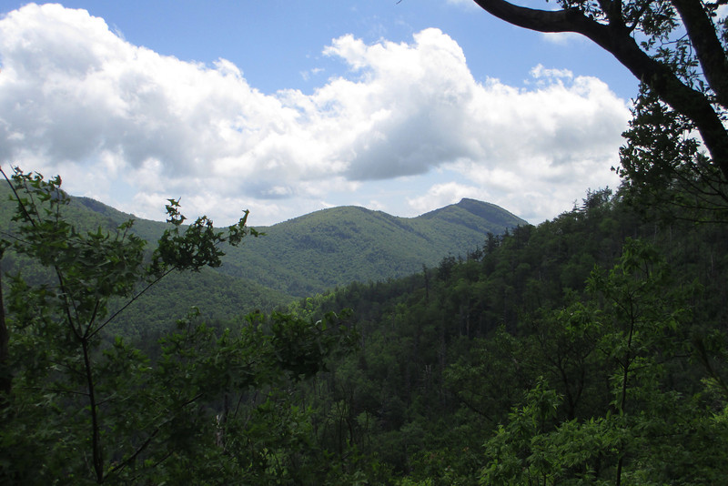 A somewhat open ledge allowed for a beautiful view south across the gorge to Hawksbill Mountain (4,020')...