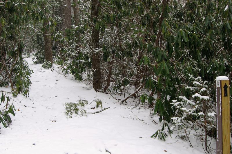 Plunge Basin Trail
