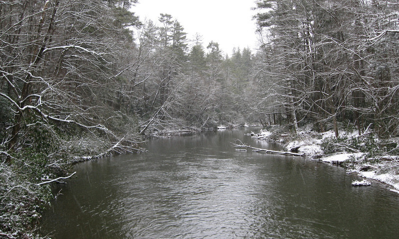 The Linville River, looking downstream...