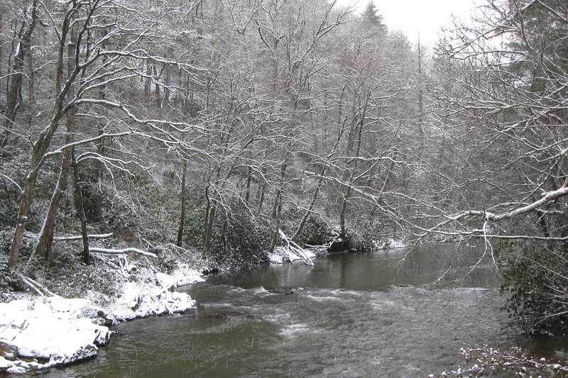 The Linville River, looking upstream...