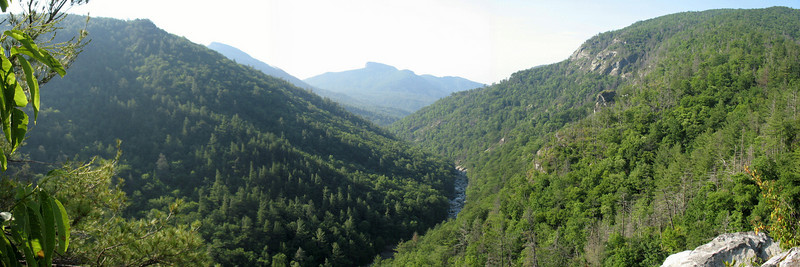 The stunning view south from the top of Babel Tower. Hawksbill Mt pokes its head above the flanks of Sitting Bear Mt to the left. Tablerock is straight down the gorge and the rocky Laurel Knob is to the right.